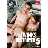 Twinks Destroyed 5